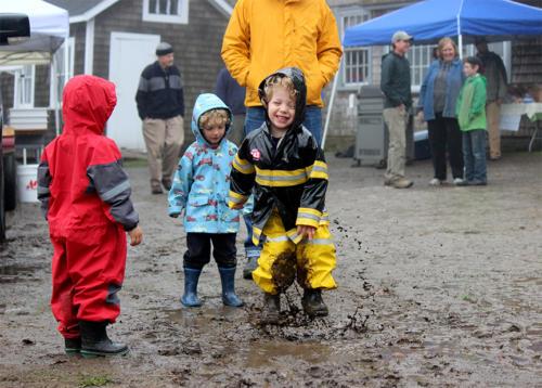 mud-and-joy.-black-and-yellow-coat